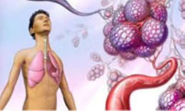 ترکیباتی که کمی ریه هایتان را باز می نمایند